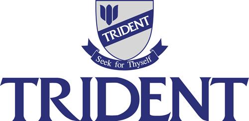 Trident Computer College